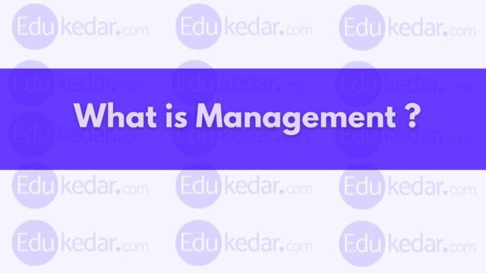 management definition